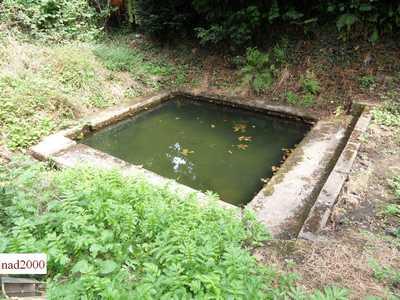 Fierville les Mines 50-fierville-les-mines-h.-daumaille