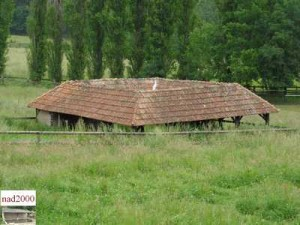 49-Beaupréau - Le bois du coin