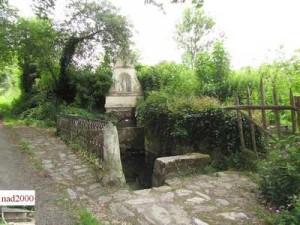 49-Bouchemaine -Epirée