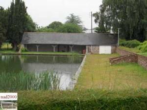 49-Daumeray - Bord de l'étang